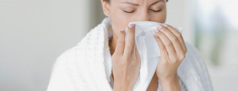 main-allergy